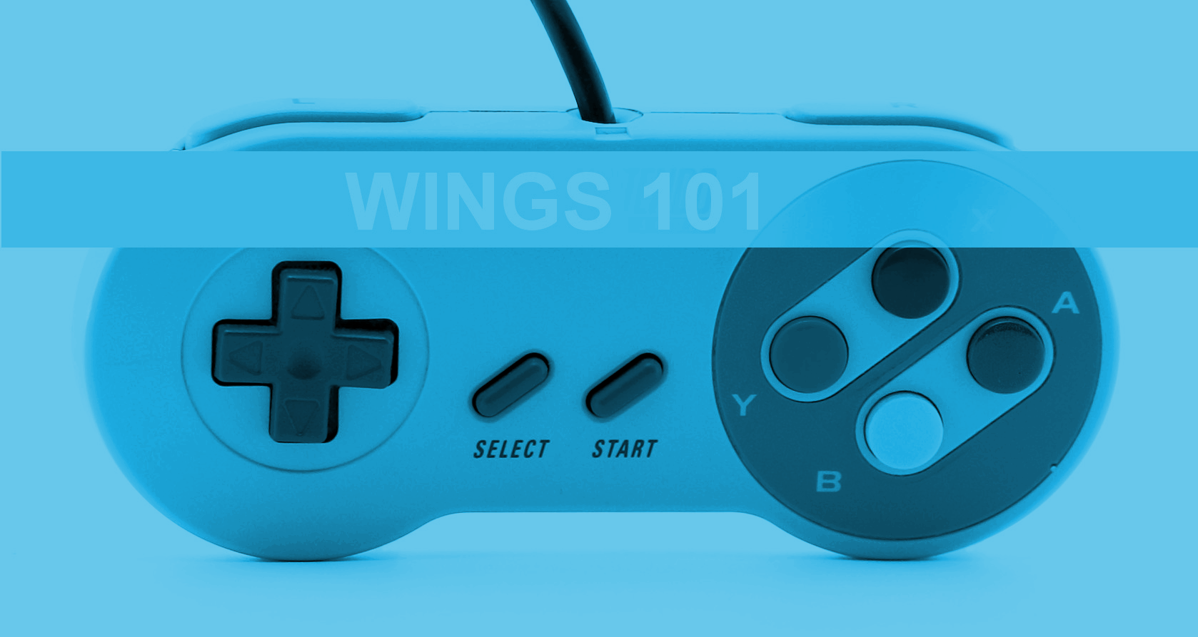 WINGS 101: Privilege and Videogames